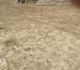 It is a land and it is in hardoi city it is 1600 sq ft
