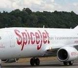 Spice jet Airlines Urgent bases hiring for the Multiple locatio