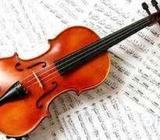 Learn Violin At Your Home