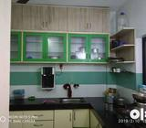 Urgently required 2 flatmates from feb 01 2019 in