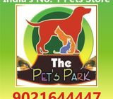 THE PETS PARK OFFER ON DOGS PUPPIES & KITTENS;-9021644447