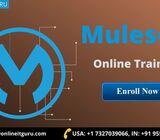 Learn mulesoft online | mule esb training
